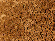Cracks   ground  soil Royalty Free Stock Photography