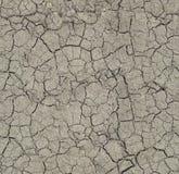 The cracks ground texture. Royalty Free Stock Photo