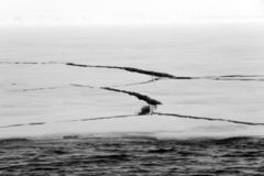 Cracks in the Ice royalty free stock photos