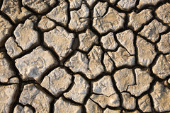 Free Cracks In A Ground Royalty Free Stock Photo - 11031125