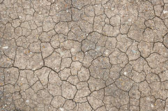 Cracks in the land in rural areas Royalty Free Stock Photography
