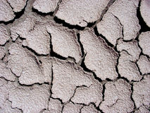 Cracks in Mud Stock Photo