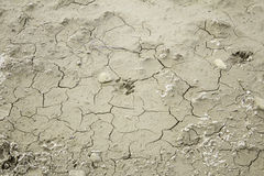 Cracks in mud Stock Photography