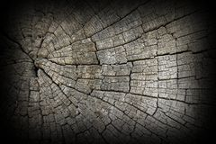 Cracks on old oak wood surface Royalty Free Stock Images
