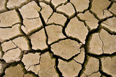 Cracks in the parched earth Royalty Free Stock Photo