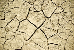 The cracks on the parched earth at the bottom of the dried-up lake Royalty Free Stock Photos