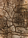 Cracks  roofing   material Royalty Free Stock Photography