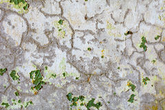 Cracks and spots of green paint on old plaster Stock Photo