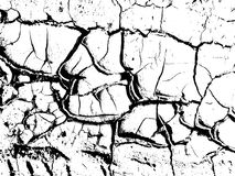 The cracks texture of dry earth. Grunge abstract background. Distressed vector overlay. Earth cracks isolated on white Royalty Free Stock Photos