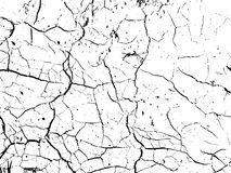 The cracks texture of dry earth. Grunge abstract background. Distressed vector overlay. Earth cracks isolated on white Royalty Free Stock Image
