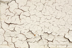 Cracks in the wall. Lots of cracks in an old white painted wall; grunge background Royalty Free Stock Photo
