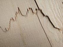 Cracks on a wood. Royalty Free Stock Photo