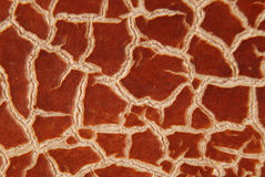 Cracky old brown textures Royalty Free Stock Images
