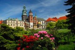 Cracovia, Polonia. Cattedrale e castello di Wawel immagini stock