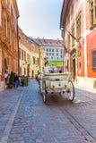 Cracow (Krakow)-Poland- horse carriage tour Royalty Free Stock Photography