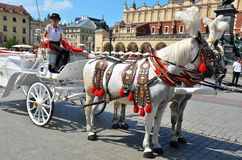 Cracow in Poland, horse cart for tourists Stock Photography
