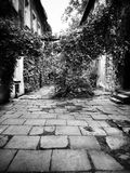 Cracow residential backyard. Artistic look in black and white. Stock Image