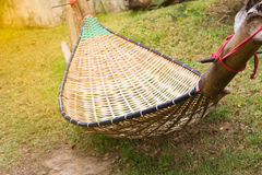 Cradle bamboo Stock Image