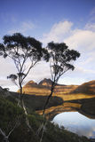 Cradle Mountain. And Dove Lake, Tasmania , Australia Stock Photography