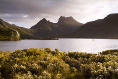 Cradle Mountain. The iconic image of Tasmania, Cradle Mountain sits majestic atop the the jewel that is Dove Lake bathed in glowing sunset light Royalty Free Stock Images