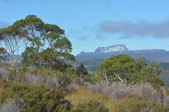 Cradle Mountain-Lake St Clair National Park Tasmania Australia. Landscape view of Cradle Mountain-Lake St Clair National Park Tasmania, Australia royalty free stock photos