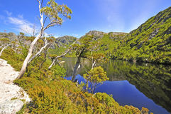 Cradle Mountain National Park Royalty Free Stock Photo