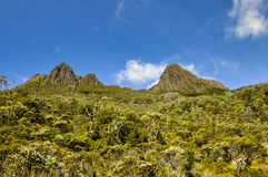 Cradle Mountain. View of Cradle Mountain peaks from Lake Dove Royalty Free Stock Images