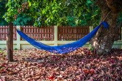 Cradle on santol tree. Blue cradle on santol tree with autumn leaves, near fence royalty free stock image