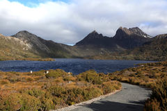 Cradle snow mountain in Australia Royalty Free Stock Photos