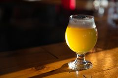 Craft Beer on a Bar with copy space. Sunlit royalty free stock photo