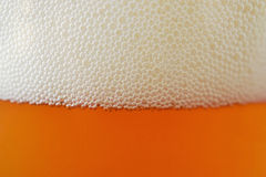Craft beer close up Stock Image