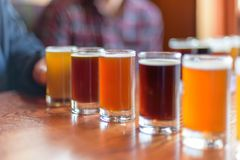 Beer flight lined up for a tasting. Craft beer flight lined up for a tasting at local brewery Royalty Free Stock Photography