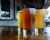 Craft Beer Flight. Craft and microbrewed beer samples at a local small-scale brewery royalty free stock photo