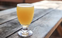 Craft Beer Glass. A Craft Beer from a Local Brewery on a Table royalty free stock photos
