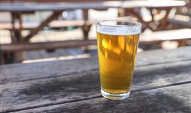 Craft Beer Glass. A Craft Beer Pint from a Local Brewery on a Table royalty free stock photo