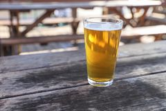 Craft Beer Glass. A Craft Beer Pint from a Local Brewery on a Table royalty free stock image