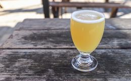 Craft Beer Glass. A Craft Beer from a Local Brewery on a Table royalty free stock photo