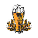 Craft beer and pub sketch vector illustration. Stock Image