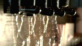 Craft beer store. Barman turning on beer taps stock video footage