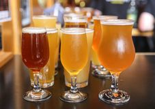 Craft Beer Tasting Flight. A Craft Beer Tasting Flight Sample of Three Beers Are On Display stock photo