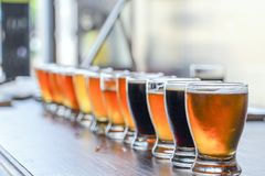 Craft Beer Tasting Flight. A Craft Beer Tasting Flight Sample Beers Are On Display on a Bar Counter stock photo