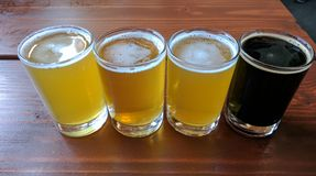 Craft Beer Tasting Flight stock image