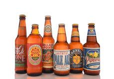Craft Brew Assortment Royalty Free Stock Photo