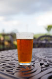 Craft Brew Pint Glass Stock Photo