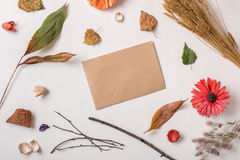 Craft card composed with autumn dry plants. Autumn background: fallen leaves, dry petals, dried flowers and plants with craft rustic paper simple rustic branches stock image