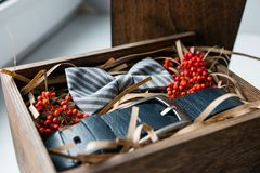 Beautiful gifts, a belt and a bow tie Stock Images