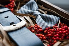 Beautiful gifts, a belt and a bow tie Stock Photography