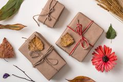 Craft handmade gifts and autumn plants Stock Photos