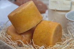 Craft o queijo no contador de s do ` da loja imagem de stock