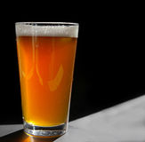 Craft pint. Pint glass of craft beer, backlit on black royalty free stock photo